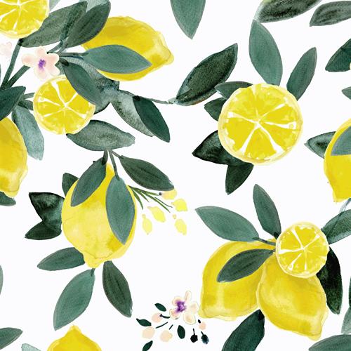 Dear Clementine Lemons