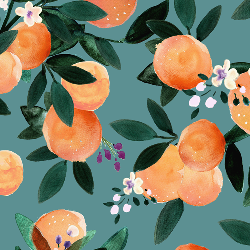 Dear Clementine oranges Teal